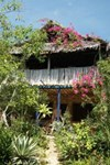 Blue Monkey Beach Cottages Barawa 1 Wasini