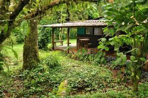 Hotel Villa Colon Costa Rica Pool